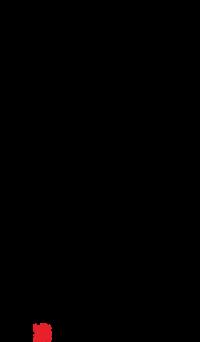 Rong Ai